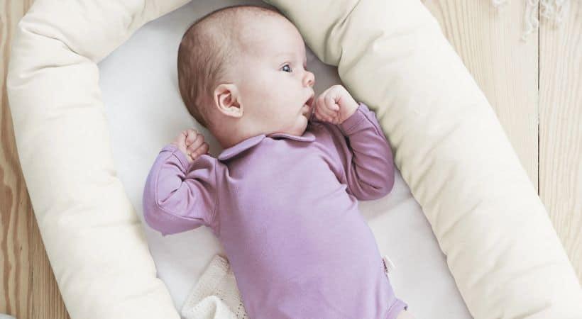 Baby Dan babynest